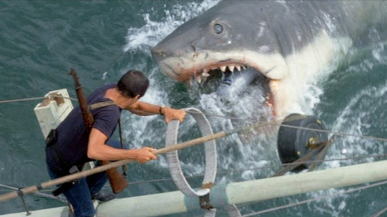 Image result for jaws